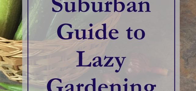 Lazy Gardening Video Journals